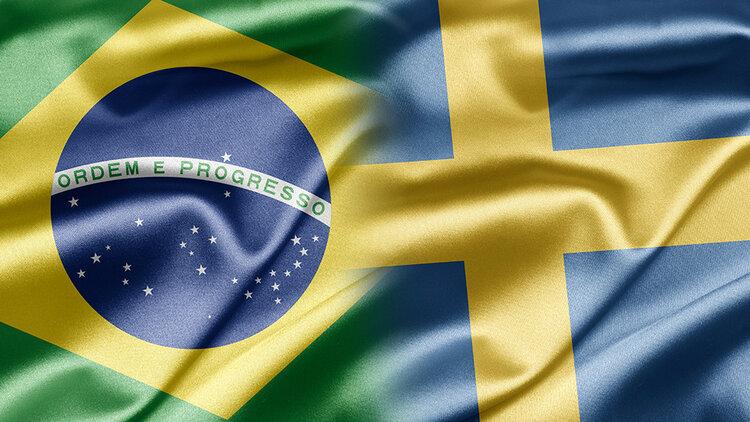 Brazilian and Swedish flag